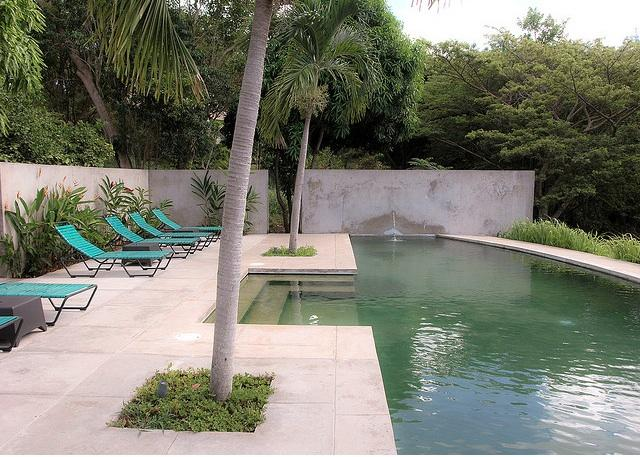 simple pool with spa and stepssundeck pool design pinterest pool ...